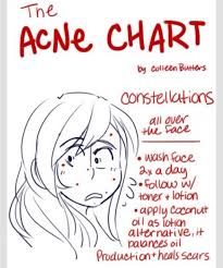 The 7 Types Of Acne The Acne Chart By Samina Khan Musely