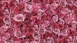 Rose Gold Wallpaper Cute Flower ...