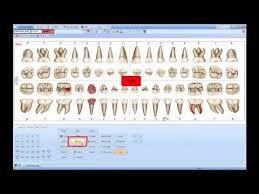 Dental Chart Mp4 Youtube