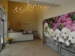 Dental Smile Design Albuquerque About Us Albuquerque Childrens Dentist Office