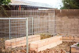 raised bed box and elevated trellis