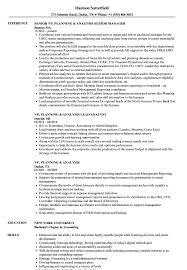 Vp Planning Resume Samples Velvet Jobs