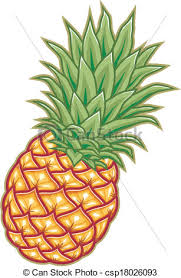 pineapple drawing. pineapple vector illustration - ripedrawing