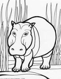 Small Picture Animal Coloring Pages Anteater Anteater 3 coloring page Kyles