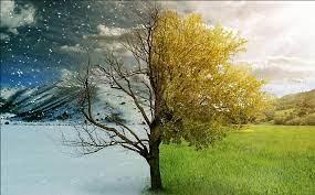 ฤดู ภาษาอังกฤษ - seasons ~ เกร็ดความรู้ภาษาอังกฤษ