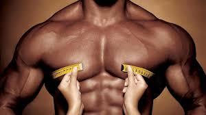 Nutritie pentru masa musculara