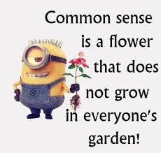 Image result for minions quotes of the day