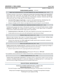 Technical Sales Resume Example