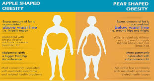 Visceral Fat Chart Abdominal Obesity Visceral Fat Abdominal Fat Bmi