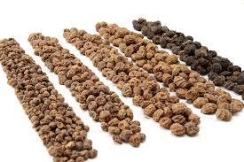Tiger Nut Business