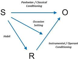 Classical Conditioning In The Classroom Conditioning And Learning Noba