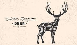 Deer Meat Chart Diagram For Butchering A Deer Diagram For Butchering A Deer