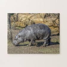 Hippo <b>Jigsaw Puzzles</b> | Zazzle