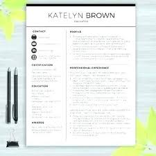 Resume Templates Word Doc Professional Ms Template Example Documents ...