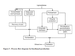 Ethanol Production Process Flow Chart Production Of Bioethanol From Banana Stem For Student Design