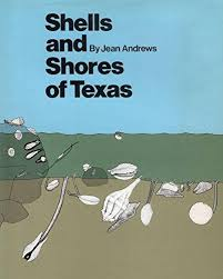 Shells And Shores Of Texas The Elma Dill Russell Spencer Foundation