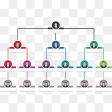 Organization Chart Psd Organization Chart Png Vectors Psd An 219599 Png