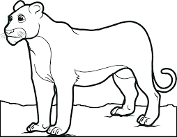 free sea lion coloring pages printable mountain page free sea lion coloring pages printable mountain page