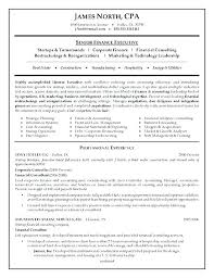 Consulting Resume Templates Technical Consultant Resume Emelcotest Com