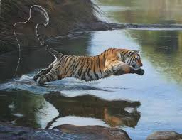 pips painting luxury 655 best images about big cat art on