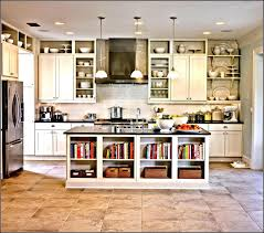 Metal Kitchen Cabinet Doors Kitchen Kitchen Cabinet Replacement Shelves Home Interior Design