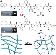 gd(iii) induced supramolecular hydrogelation with enhanced aaladin pressure washer wiring diagram at Aaladin Model 3425 Wiring Diagram