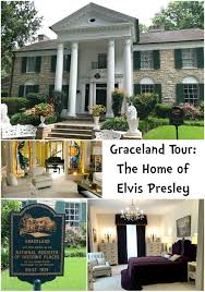 Image result for graceland