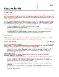 Profile Example On Resume Resume Personal Profile Example Of On It