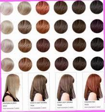 28 Albums Of Hbc Hortaleza Hair Color Chart Explore