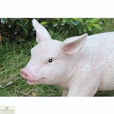 british pig garden ornament the home