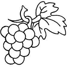 Small Picture Grapes are Berry Family Coloring Pages Color Luna