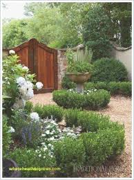 Modern Gravel Garden Lovely Garden Design Training Home Design Stunning Gravel Garden Design