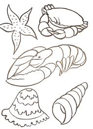Coloriage Coquillages Marins Coloriage Coquillage A Imprimer L