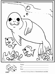 Animal Coloring Coloring Pages Printable Animal Adults Cute Free Jungle