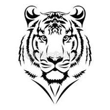 tiger drawing tattoo. Brilliant Tattoo Image Result For Tiger Tattoo Tribal Tattoos Tiger Tattoo  Tattoo Design To Drawing