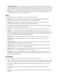 Management Analyst Job Description Beauteous Business Analyst Job Description