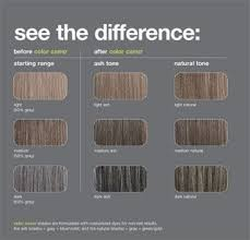 Just For Men Color Chart Redken Professional Color Camo Shade Charts Blending That