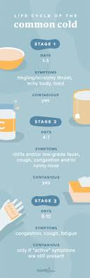 Cold Symptoms Vs Flu Symptoms Chart A Look At The Life Cycle Of A Cold