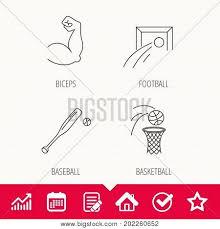Baseball Signals Chart Baseball Football Vector Photo Free Trial Bigstock