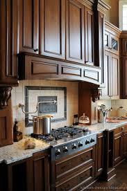 Gourmet Kitchen Design Style Home Design Ideas Delectable Gourmet Kitchen Design Style