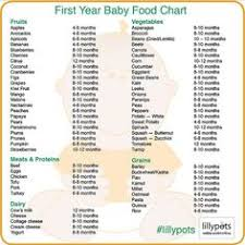 23 Best Baby Food Recipes Stage 1 Images Baby Food Recipes