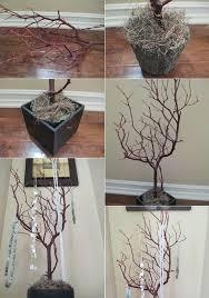 DIY Jewelry Organizer: How to Make Tree Branch Jewelry Holder