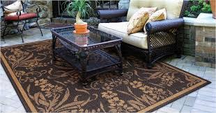 contemporary outdoor rugs big lots