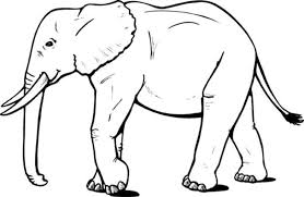 Small Picture Elephant Coloring Page Simple Baby Elephant Clipart Coloring