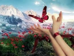 Resultado de imagen de mariposas vuelos