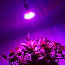 Bóng đèn Led quang hợp GIVASOLAR-ZW0001 6W