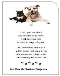 Loss Of Pet Quotes Stunning 48 Best Pet Loss Words Photos Of Comfort Images On Pinterest