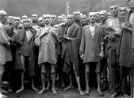 Image result for Nazi extermination camps