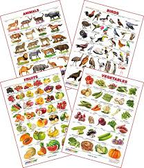1 Year Baby Food Chart In Kannada Spectrum Educational Wall Charts Set Of 4 Kannada