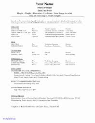 Tamu Career Center Resume Template